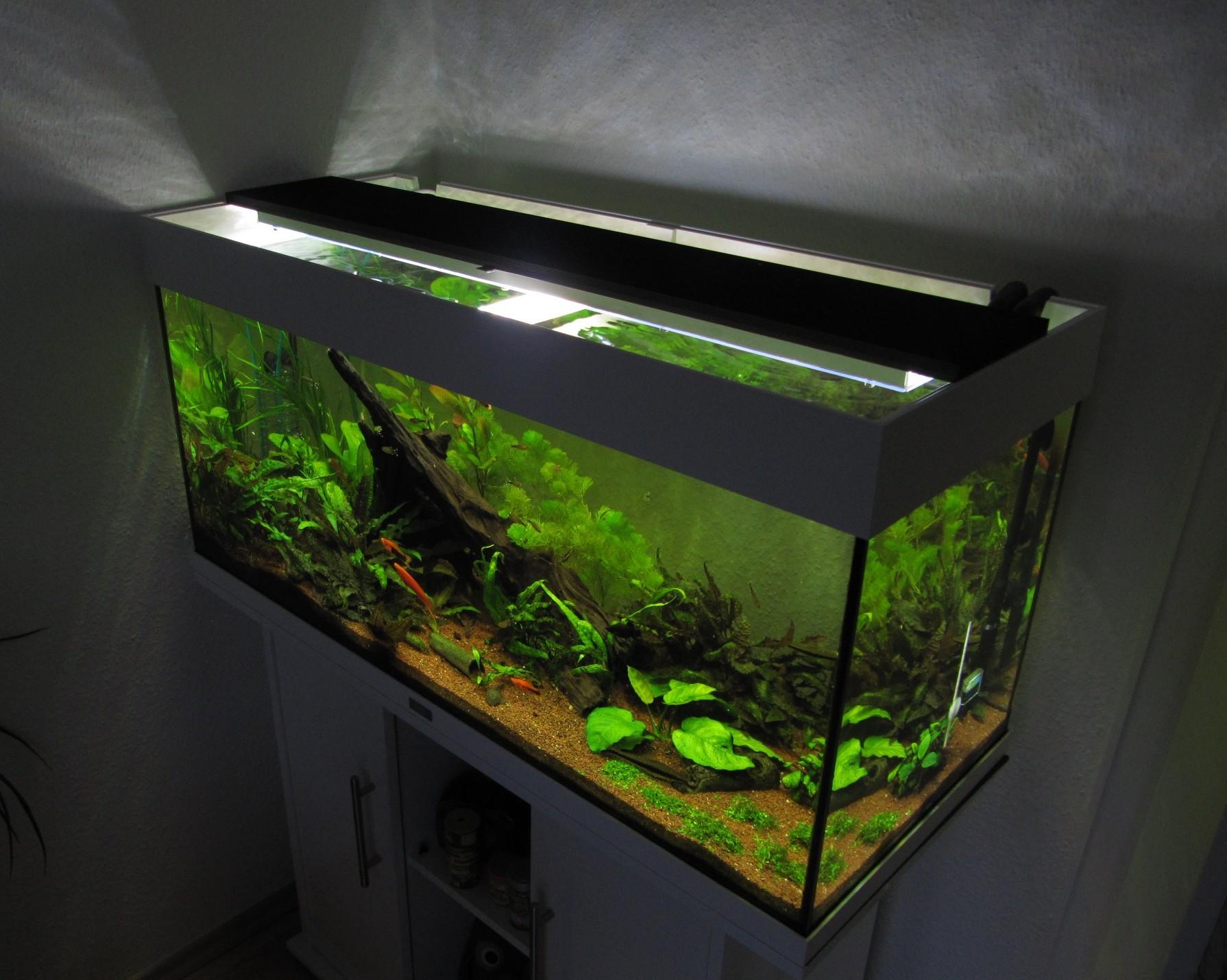 aquarium led beleuchtung selber bauen raum und m beldesign inspiration. Black Bedroom Furniture Sets. Home Design Ideas