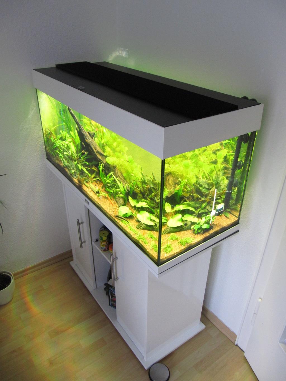 Sinnvoll Aquarium Ca 60 L Mit Led-leuchte